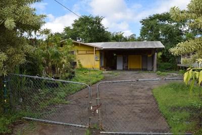 Hilo Single Family Home For Sale: 117 Kalo St