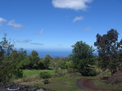 Hawaii County Single Family Home For Sale: 92-8670 King Kamehameha Blvd