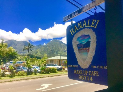 Kauai County Business Opportunity For Sale: 5-5144 Kuhio Hwy (Hanalei)