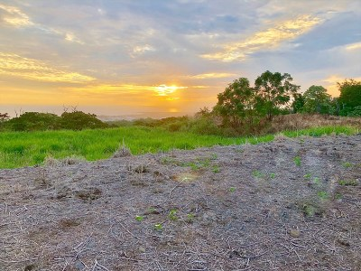 Hawaii County Residential Lots & Land For Sale: Melelina St