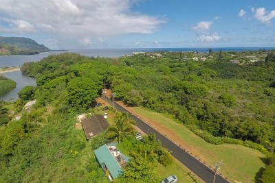 Kauai County Residential Lots & Land For Sale: 5210 Hanalei Plant Rd