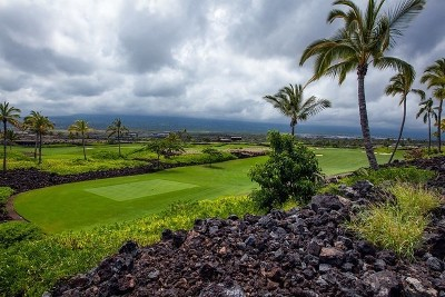 Hawaii County Residential Lots & Land For Sale: 73-2608 Niu Place