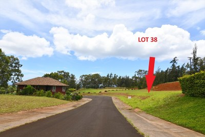 Kauai County Residential Lots & Land For Sale: Kua Aina St