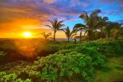 Hawaii County Single Family Home For Sale: 15-2745 N Kahala St