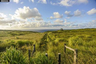 Haiku Residential Lots & Land For Sale: 744 Kai Huki Cir #Lot #9