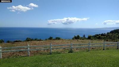 Wailuku Residential Lots & Land For Sale: 3650 Kahekili #Lot 1-A-