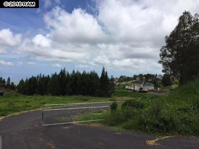 Kula Single Family Home For Sale: 1001 Copp Rd