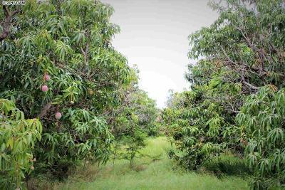 Kihei Residential Lots & Land For Sale: Kaiola Pl