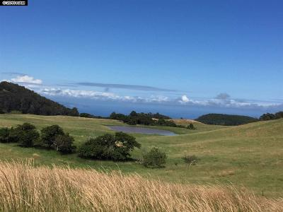 Makawao Residential Lots & Land For Sale: 325 Waiahiwi