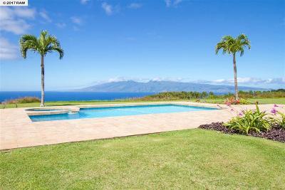 Maui County Single Family Home For Sale: 213 Omalu #3