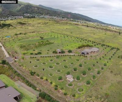Kahului, Wailuku Single Family Home For Sale: 37 Hui Hui