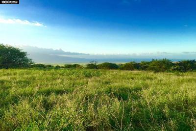 Kula, Wailuku Residential Lots & Land For Sale: Hoomaikai #Lot 1A