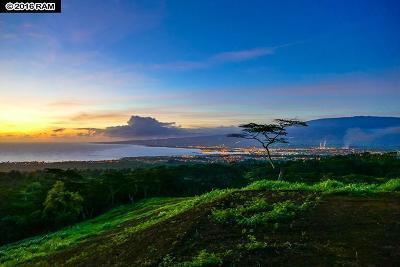Wailuku Residential Lots & Land For Sale: Malaihi