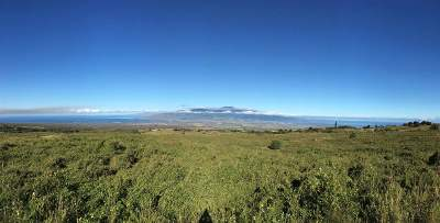 Residential Lots & Land For Sale: Lot #8 Kula Hwy #Lot #8