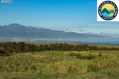 Makawao Residential Lots & Land For Sale: 2330 Baldwin #Lot 2