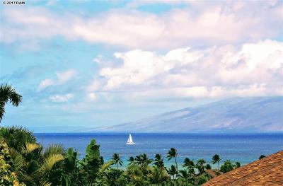 Maui County Single Family Home For Sale: 189 Kahana Ridge Dr