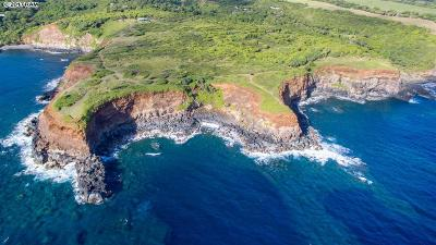 Residential Lots & Land For Sale: Honopou Rd
