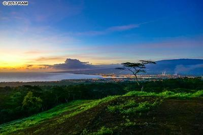 Wailuku Residential Lots & Land For Sale: Malaihi