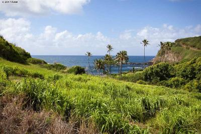 Haiku Residential Lots & Land For Sale: Nalu Ola Ranch Hana Hwy Hwy