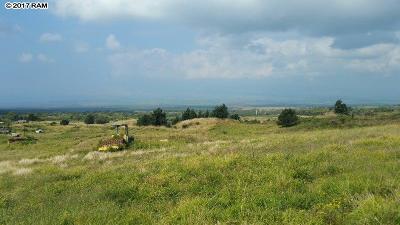 Kula, Wailuku Residential Lots & Land For Sale: 375 Pulehu Rd