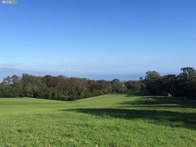 Makawao Residential Lots & Land For Sale: 679 Olinda Rd #Lot #1 P