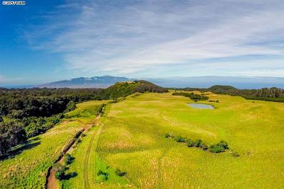 Makawao Residential Lots & Land For Sale: Waiahiwi Rd