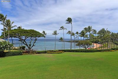 Maui County Condo For Sale: 14 Coconut Grove Ln #14