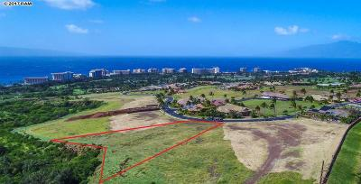Residential Lots & Land For Sale: 564 Anapuni Loop