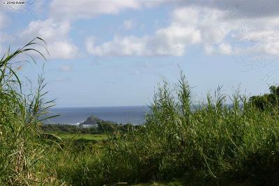 Hana Residential Lots & Land For Sale: Kapia Rd
