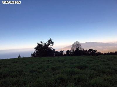 Maui County Residential Lots & Land For Sale: Kula Hwy