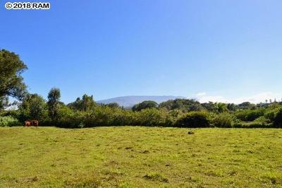 Residential Lots & Land For Sale: Kauhikoa Rd