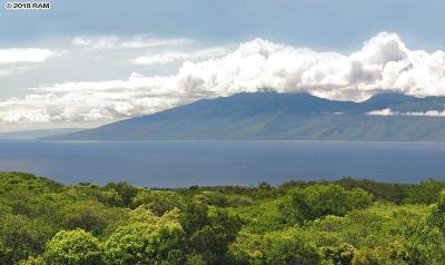 Lahaina Residential Lots & Land For Sale: 142 Keoawa St #25