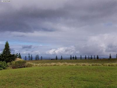 Maui County Residential Lots & Land For Sale: D97 Kaana St