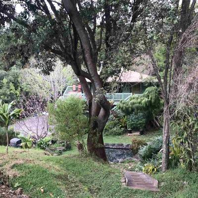 Makawao Single Family Home For Sale: 1 Alaluana Rd #Olinda (