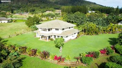Wailuku HI Single Family Home For Sale: $1,399,000