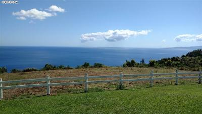Kahului, Wailuku Residential Lots & Land For Sale: 3650 Kahekili Hwy #Lot 1-A-