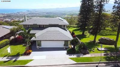 Maui County Single Family Home For Sale: 633 S Alu Rd