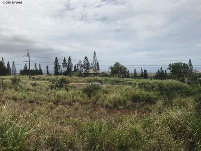 Maui County Residential Lots & Land For Sale: N Waieli St