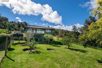 Kula Single Family Home For Sale: 594 Hapapa Rd