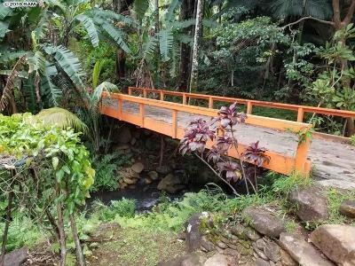 Residential Lots & Land For Sale: 400 N Honokala Stream Rd