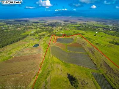 Residential Lots & Land For Sale: Koheo Rd #A