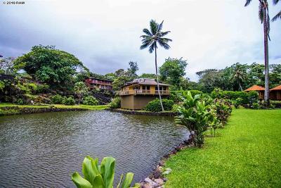 Hana Single Family Home For Sale: 134 Waikoloa Rd