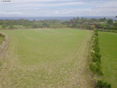 Residential Lots & Land For Sale: 25 Piialii St