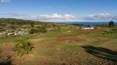 Residential Lots & Land For Sale: Hookili Rd #3-D