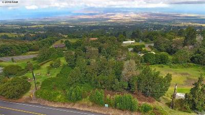 Kula HI Residential Lots & Land For Sale: $475,000