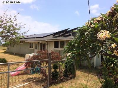 Single Family Home For Sale: 849 Pueo Dr