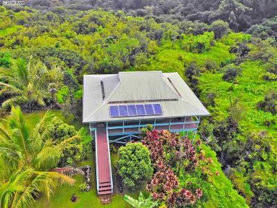 Hana Single Family Home For Sale: 900 Hana Hwy