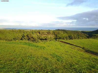 Residential Lots & Land For Sale: 988 Auwaha Pl #Lot 19