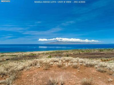 Residential Lots & Land For Sale: Lot 4b Punakea Loop