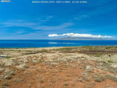 Residential Lots & Land For Sale: Lot 4a Punakea Loop